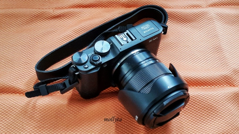 Kamera mirrorless Fujifilm yang biasa aku gunakan