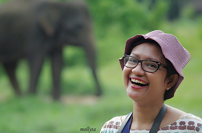 Foto dekat gajah