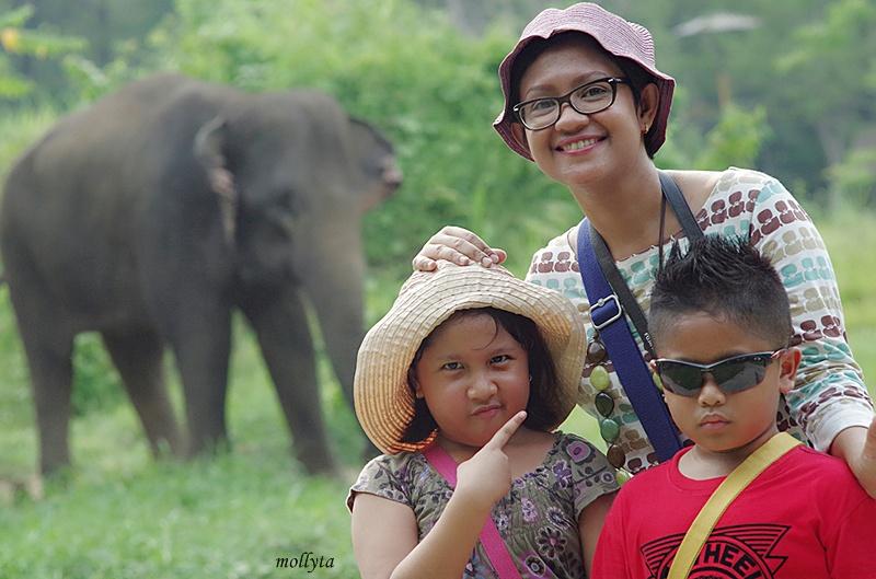 Foto bersama gajah Kebun Binatang Medan