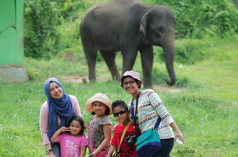 Foto bareng gajah Kebun Binatang Medan