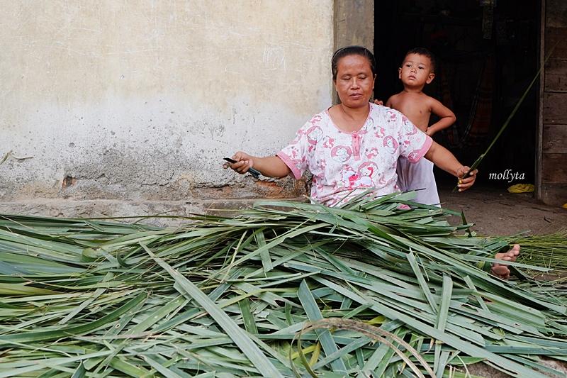 Memotong daun nipah di Gebang Langkat