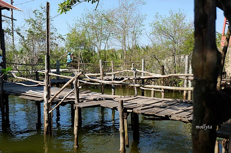 Mangrove di desa Dogang