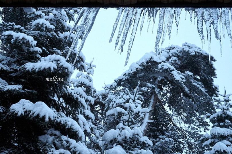 Salju di Bolu Turki