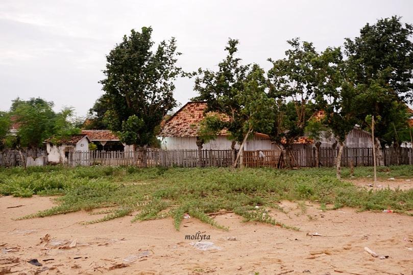 Rumah penduduk di Desa Batioh