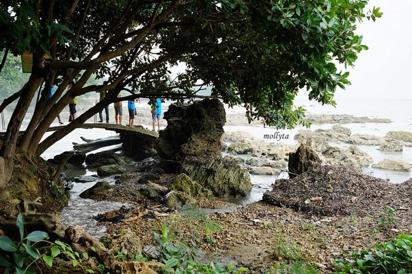 pohon rindang di air terjun Toroan Sampang Madura