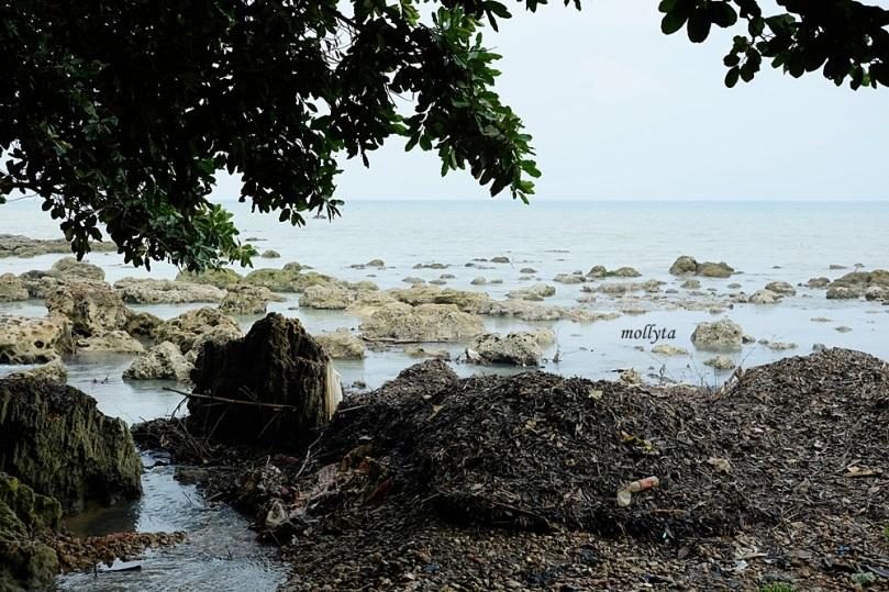 Laut tempat air terjun Toroan bermuara