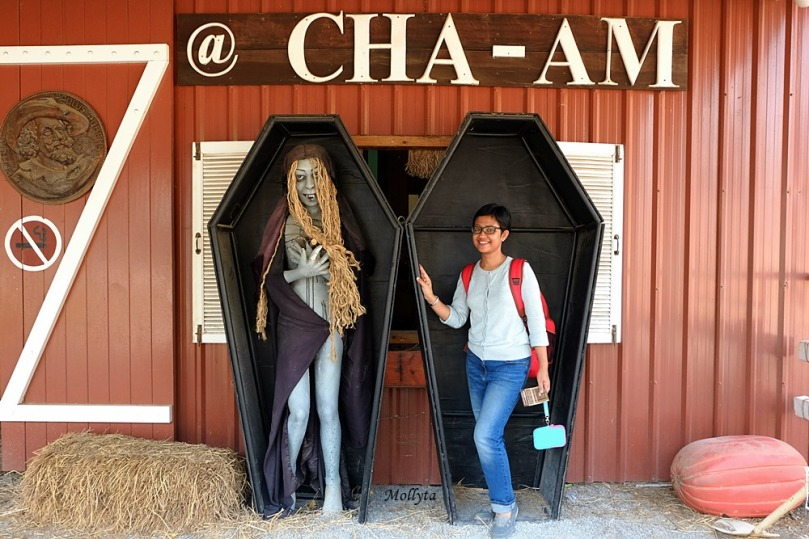 Tempat wisata menarik Swiss Sheep Farm di Cha-Am Hua Hinn