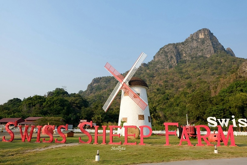 Swiss Sheep Farm di Cha-Am Hua Hin Thailand