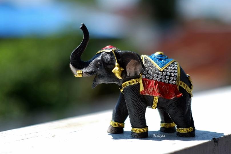 Oleh-oleh souvenir dari Thailand