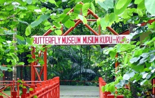 Wisata Kerajaan Kupu-kupu Bantimurung