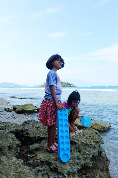 Anak-anak mencari kerang laut