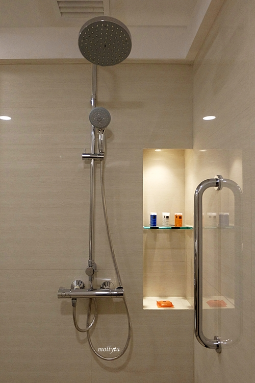 Shower Deluxe Room Radisoon Medan
