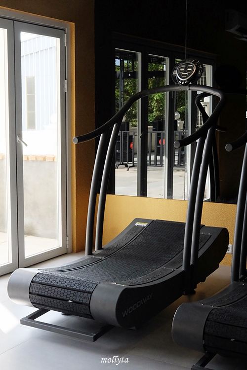 Manual Treadmill di Black Gold